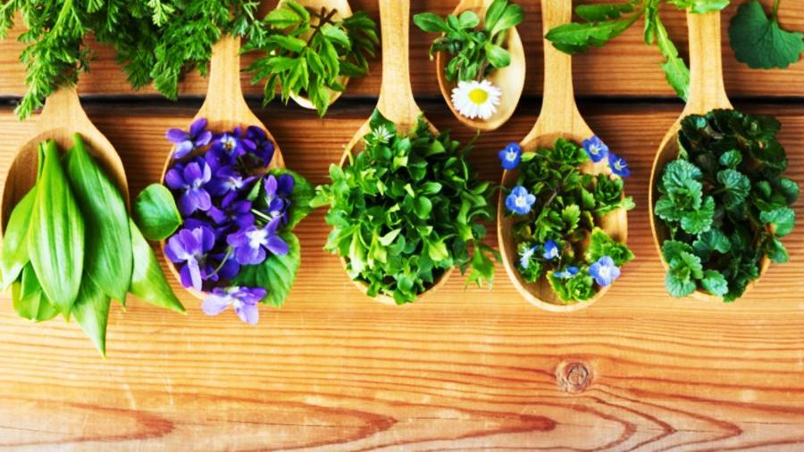 Trucos para estar sanos con naturopatía